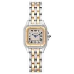 Cartier Panthere Ladies Steel Yellow Gold 2-Row Ladies Watch W25029B6