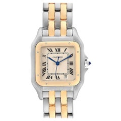 Cartier Panthere Large Steel Yellow Gold Two Row Men's Watch W25028B8