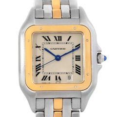 Cartier Panthere Steel 18 Karat Yellow Gold Unisex Watch W25028B5