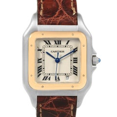 Cartier Panthere Steel Yellow Gold Brown Unisex Watch W25028B5 Box