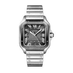 Cartier Santos Automatic Large Model Steel Watch WSSA0037