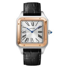 Cartier Santos-Dumont Hand-Wound Mechanical Movement Watch W2SA0017
