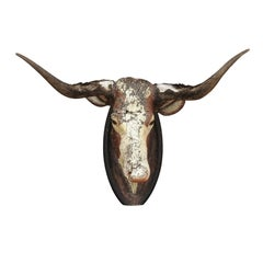 Carved Bull Head with Weathered Patina, Found in an Austrian Castle, circa 1880
