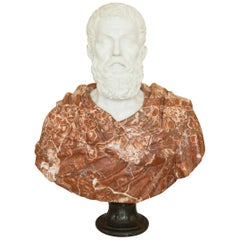 Carved Marble Bust of a Greco-Roman Figure