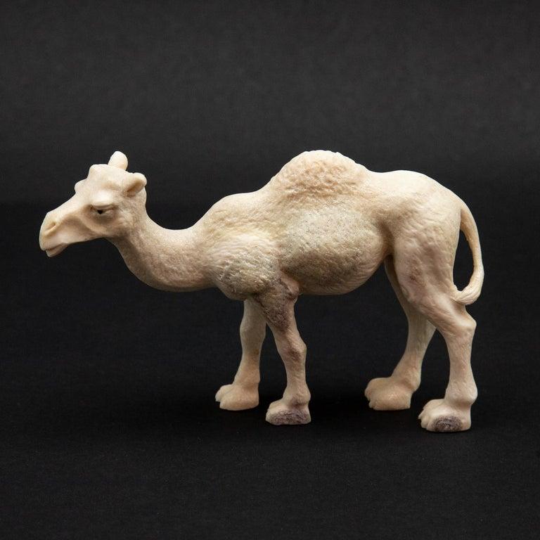 Contemporary Carved Moose Antler Camel For Sale