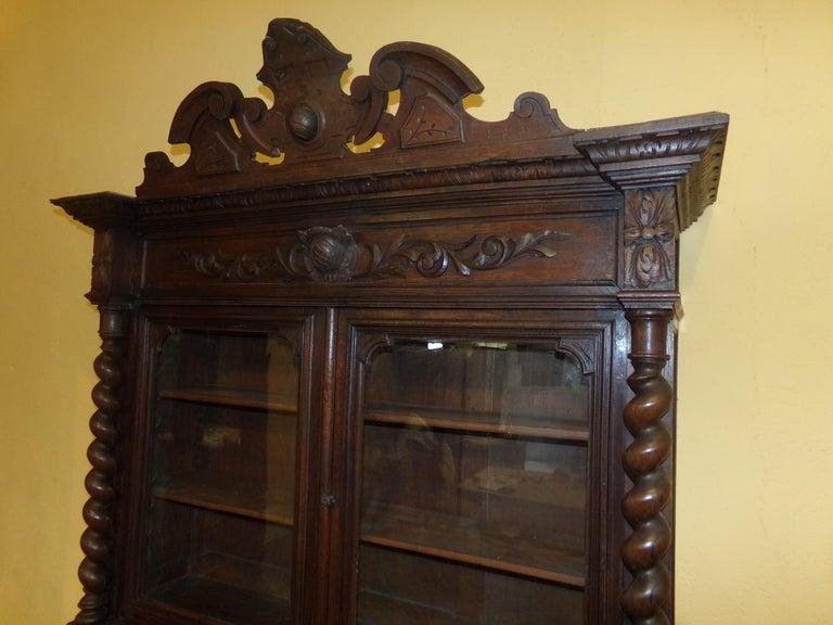 Louis XIII Carved Oak Bookcase / Gun Cupboard For Sale