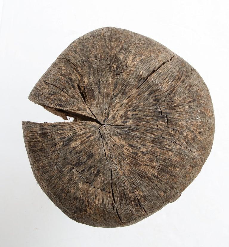 Wood Carved Oak Mushroom For Sale