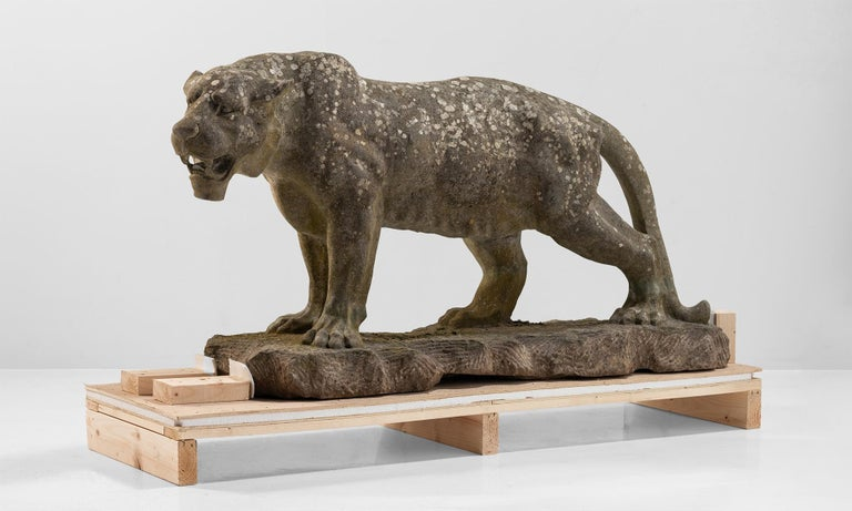 Carved stone lioness England, 20th century.  Carved in Belgium stone with a great patina.
