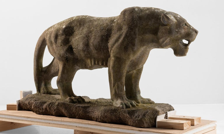 English Carved Stone Lioness England, 20th Century For Sale