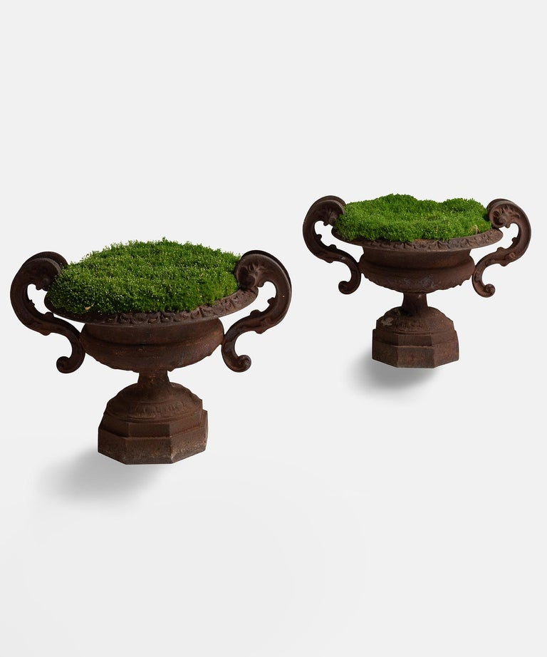Heavy cast iron forms with beautiful rusted patina.