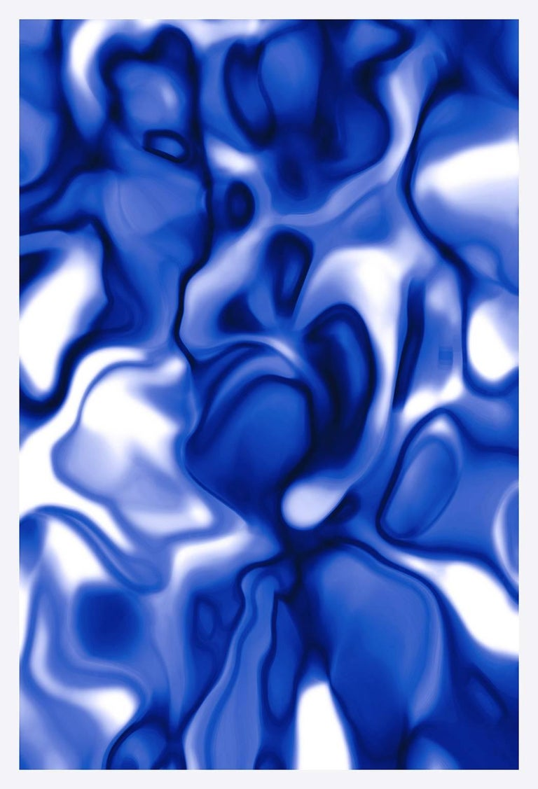 Cate Woodruff Abstract Photograph - Nobility