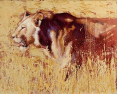 Sunglare - original African lion oil painting Contemporary Art 21st Century