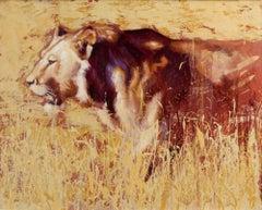 Sunglare - original lion oil painting Contemporary wildlife Art 21st Century