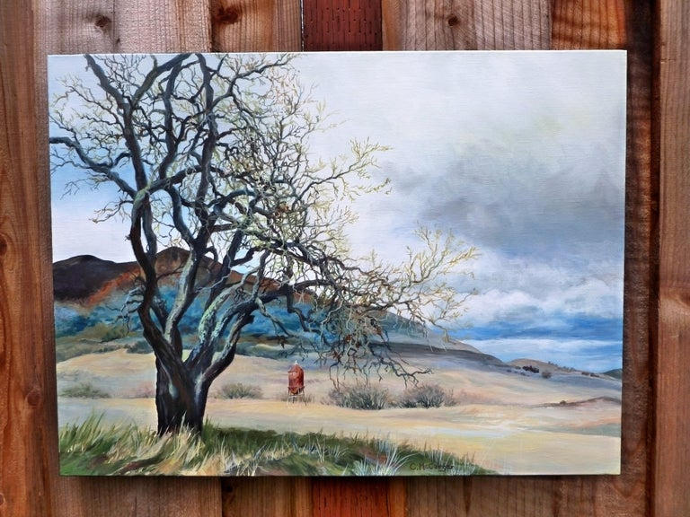 <p>Artist Comments<br />A quiet, peaceful meadow near Lime Ridge on Mt. Diablo in California. Catherine explains that at one time, this area was bustling with mining activity. She focused on two points of interest in the landscape; the aging oak