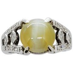 Cat's Eye Green Chrysoberyl Cabochon and White Diamond Ring in Platinum
