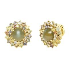 Cicada Cat's Eye Chrysoberyl and Yellow Diamond, Gold Stud Earrings