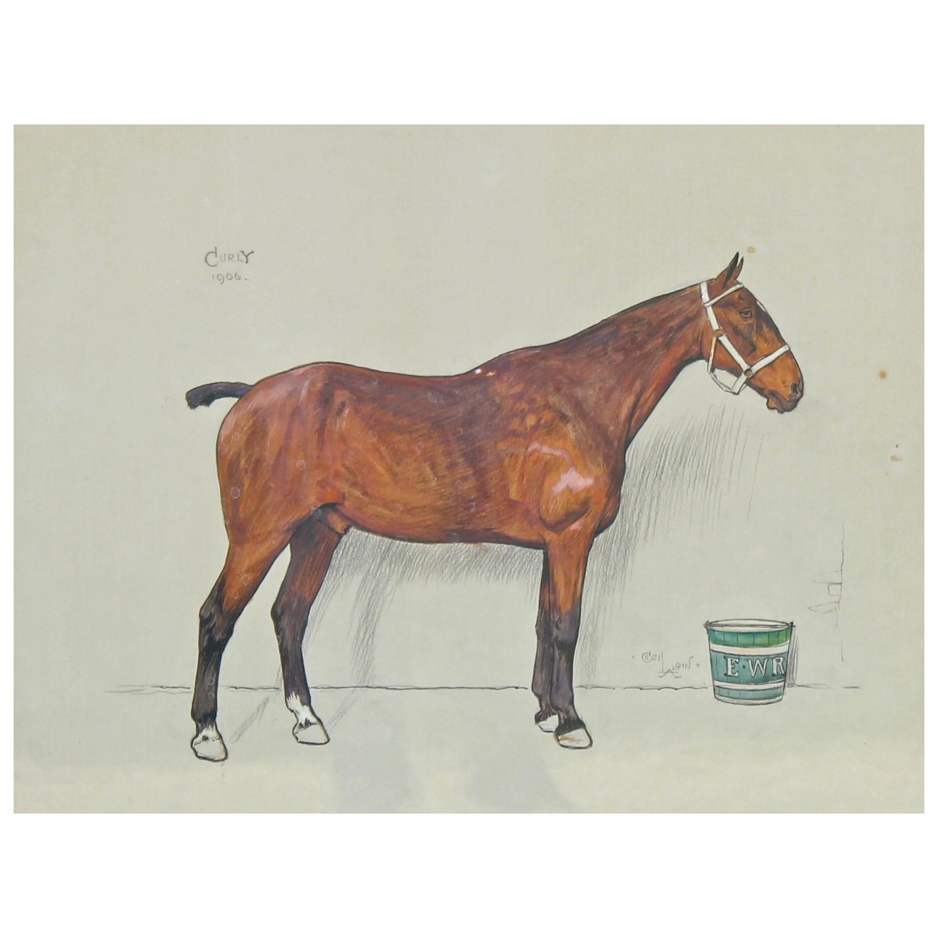 Cecil Aldin Original Watercolour