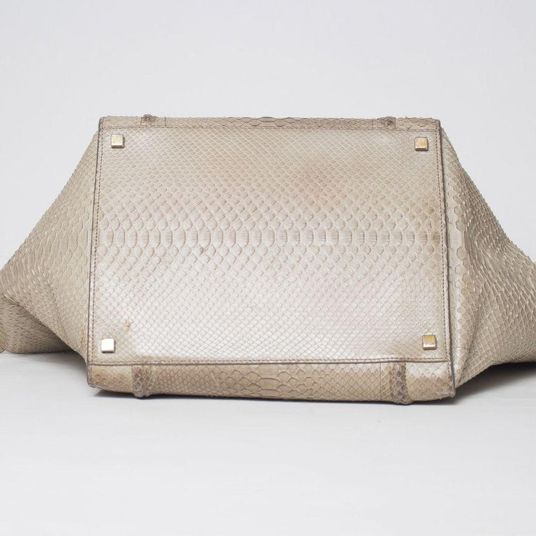 Celine Luggage Phantom Python Handbag 2013 For Sale 3