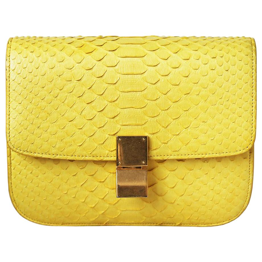 Celine Python Leather Medium Classic Box Bag