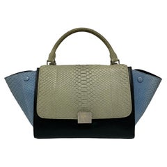 Celine Trapeze Python Handbag in Blue, Gray and Black Colors