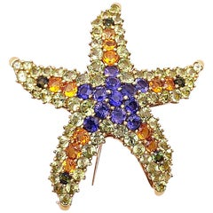 Cellini 18 Karat Yellow Gold Starfish Brooch with Semi-Precious Stones