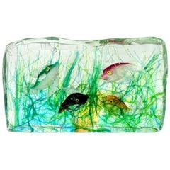 Cenedese Murano Green Pink Orange Black Fish Italian Art Glass Aquarium Block