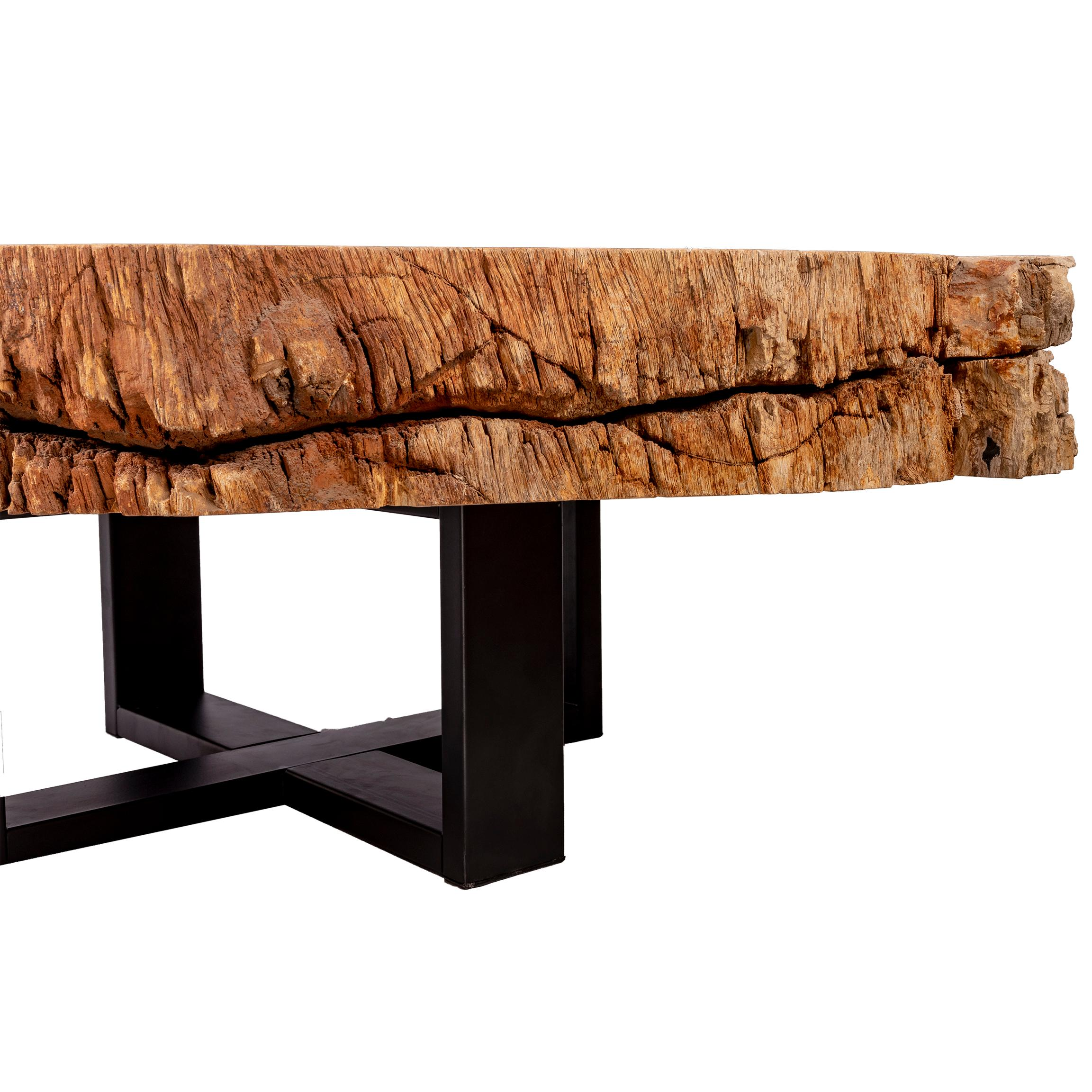Phenomenal Center Of Coffee Table Natural Circular Shape Petrified Wood With Metal Base Download Free Architecture Designs Scobabritishbridgeorg