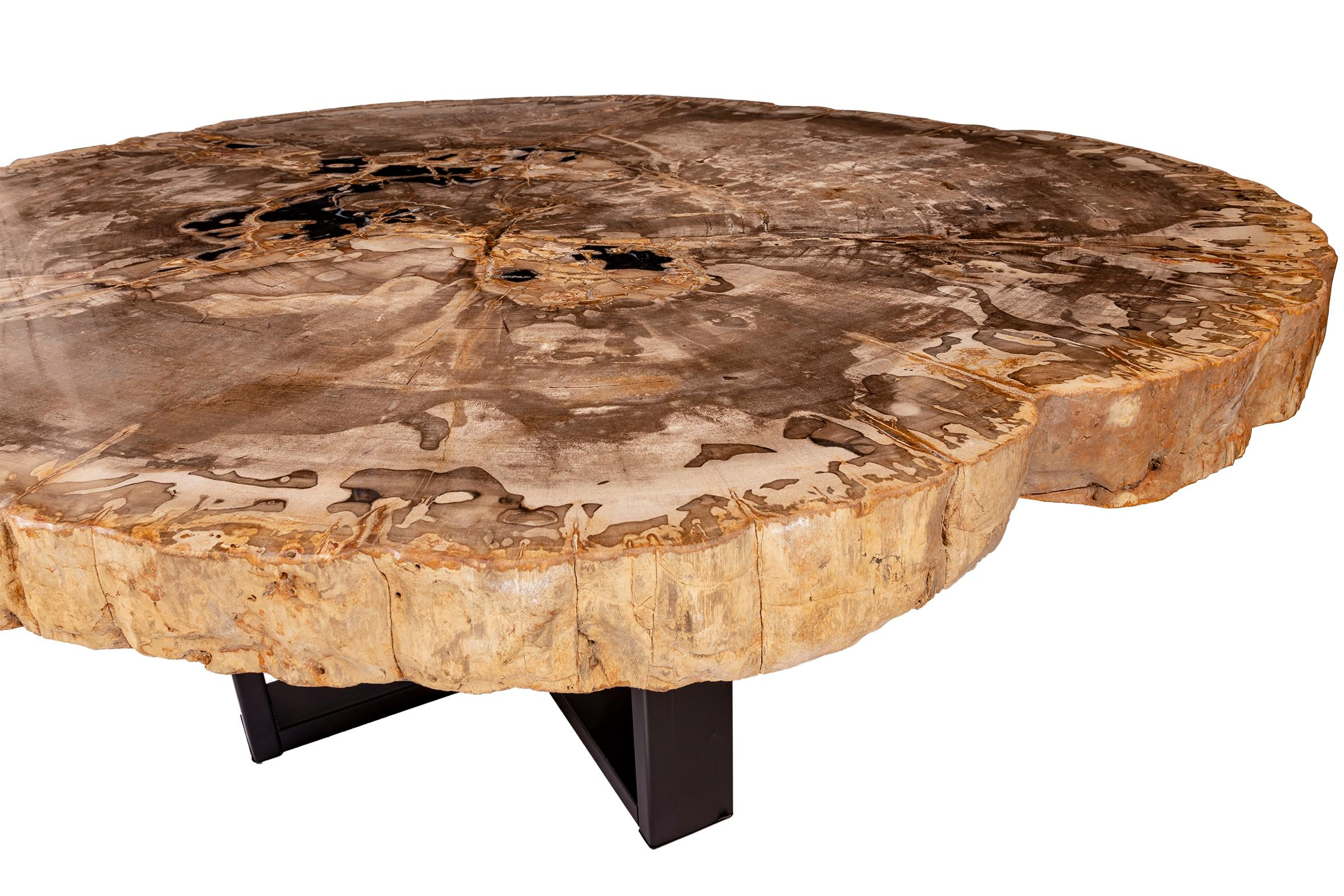 Groovy Center Of Coffee Table Natural Circular Shape Petrified Wood With Metal Base Download Free Architecture Designs Scobabritishbridgeorg