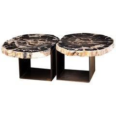 Center Table, Double Petrified Wood Table with Brass-Plated Metal Base