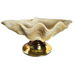 Centerpiece in the Shape of a Large Shell with Brass