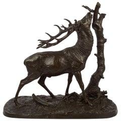 """""""Cerf a la Branche"""" French Antique Bronze Sculpture after Pierre Jules Mene"""