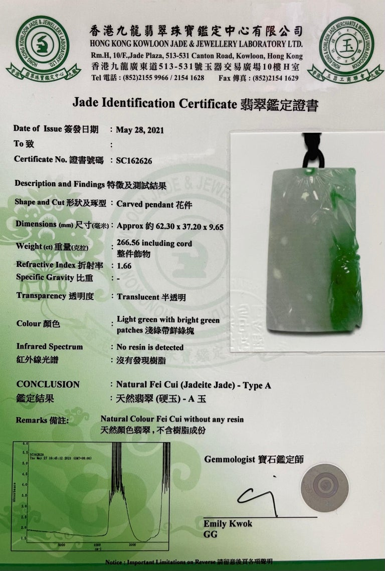 Certified 266cts Jadeite Cicada Pendant, Long Life & Immortality, Imperial Green For Sale 14