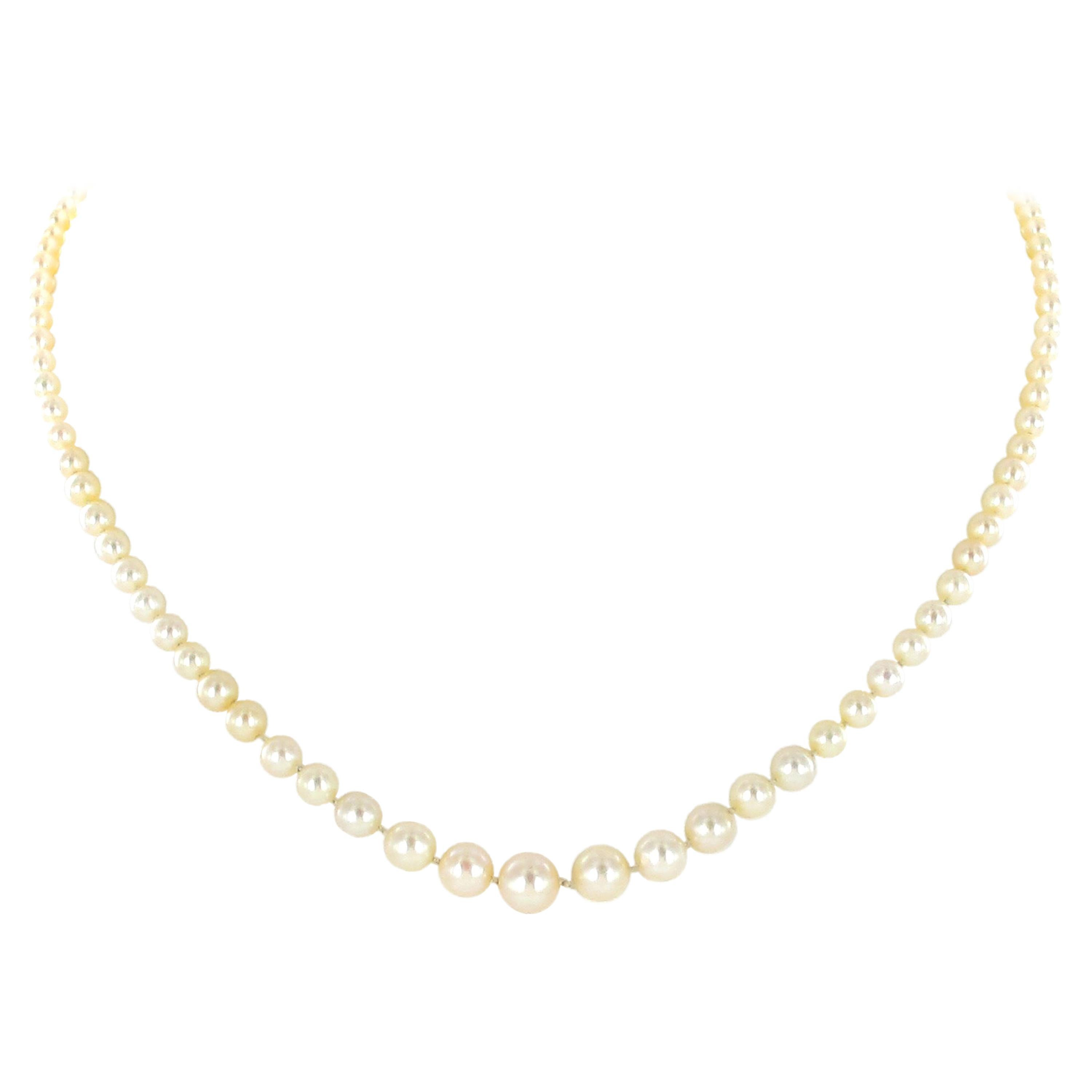 Certified Natural Salt Water Pearl Necklace