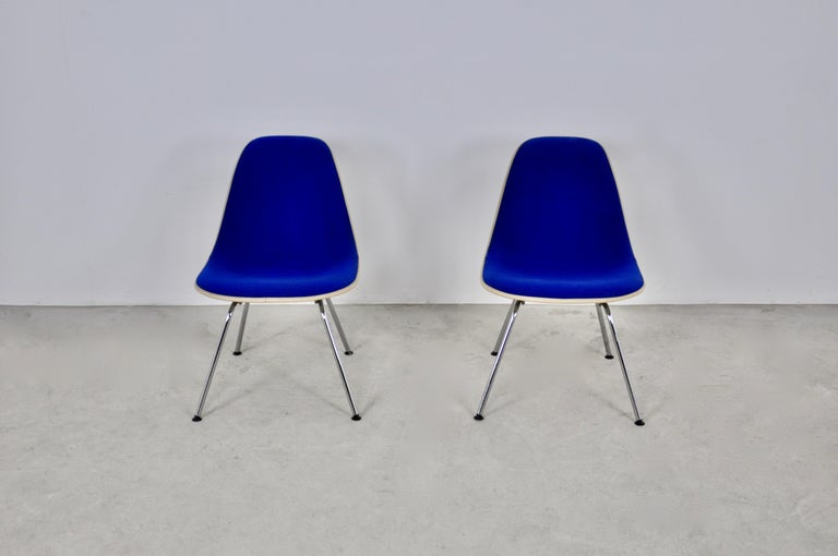 Central American Chairs by Charles and Ray Eames for Herman Miller, 1960s For Sale
