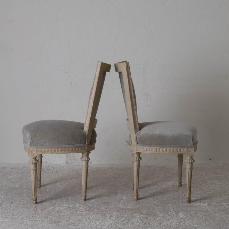 Chairs dining set of 8 Swedish Gustavian gray, Sweden. A set of 8 dining chairs made during the Gustavian period 1790-1810 in Sweden. Restored in its original finish. Reupholstered in a greyish beige cotton velvet. Frame decorated in nail tip