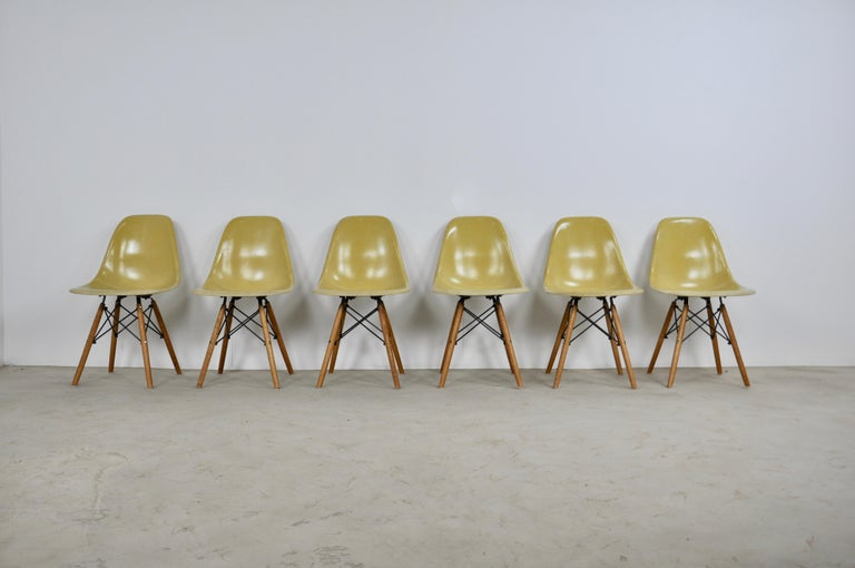 Set of 6 chairs in yellow fiberglass. Stamped Herman Miller (see photo). The legs had to be changed because old in bad condition.