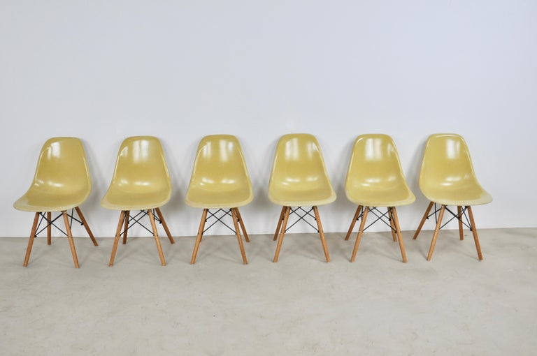 Mid-Century Modern Chairs DSW by Charles & Ray Eames for Herman Miller, 1970s For Sale