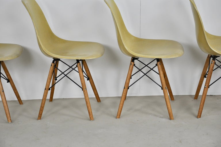 Chairs DSW by Charles & Ray Eames for Herman Miller, 1970s In Good Condition In Lasne, BE