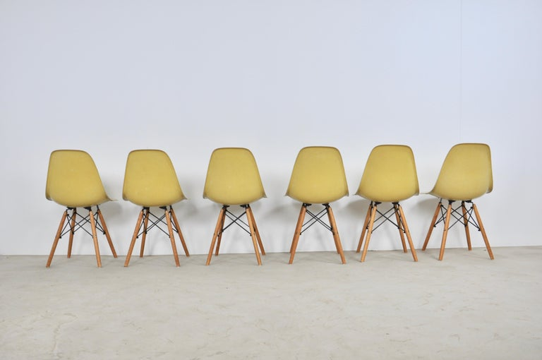 Late 20th Century Chairs DSW by Charles & Ray Eames for Herman Miller, 1970s
