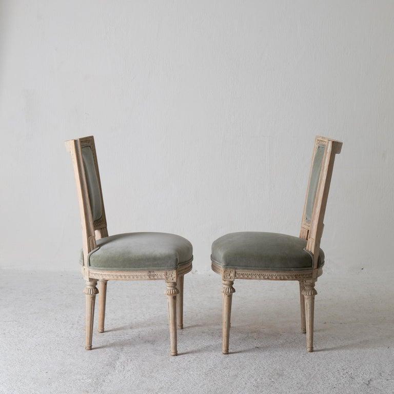 Chairs Side Chairs Swedish Gustavian 1790-1810 Velvet Green Beige White Sweden For Sale 4
