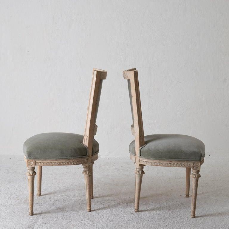 Chairs Side Chairs Swedish Gustavian 1790-1810 Velvet Green Beige White Sweden For Sale 2