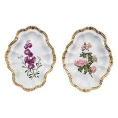 Chamberlain's Worcester Porcelain Botanical Dishes