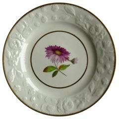 Chamberlains Worcester Porcelain Plate Hand Painted Botanical Pattern