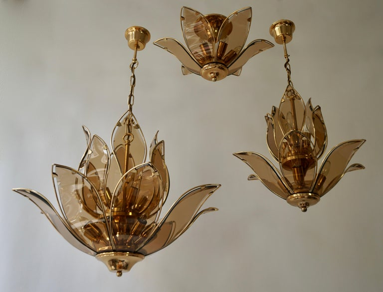 Chandelier in Brass and Glass For Sale 7