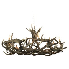 Chandelier Made of Fallow Deer and Red Stag Antlers