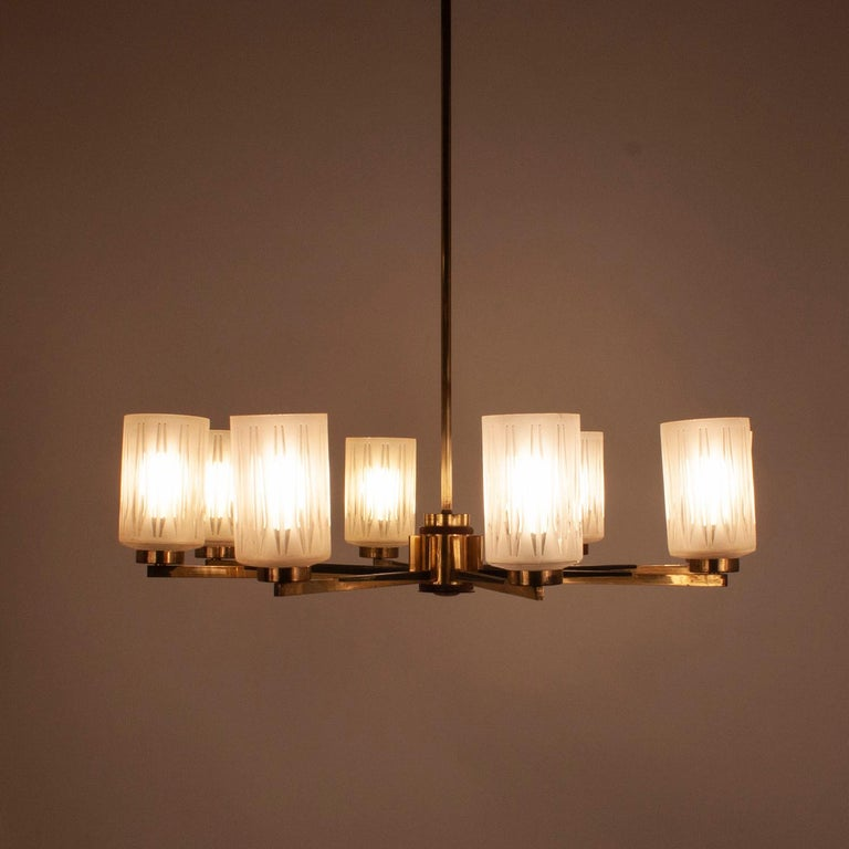 Mid-Century Modern Chandelier with 8 Lights, Polished Brass, Glass Lampshades, Germany, 1950s For Sale