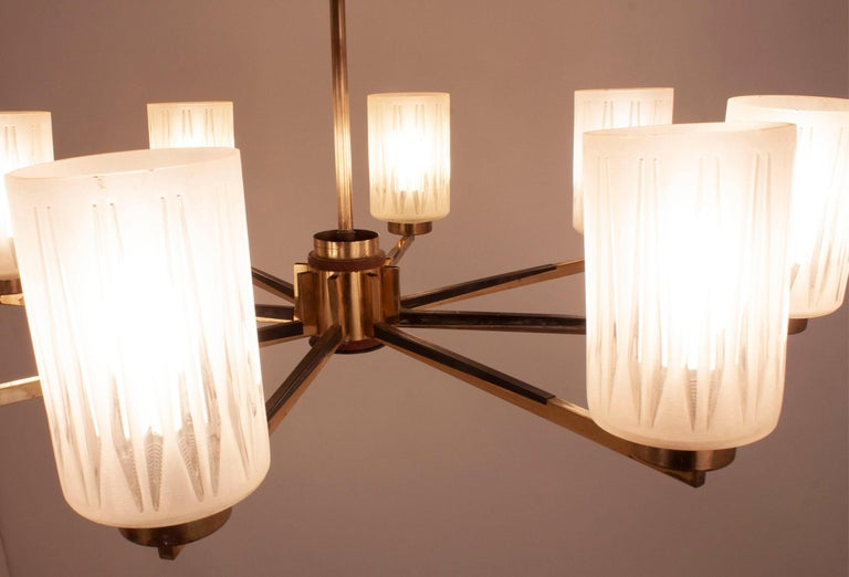 Mid-20th Century Chandelier with 8 Lights, Polished Brass, Glass Lampshades, Germany, 1950s For Sale
