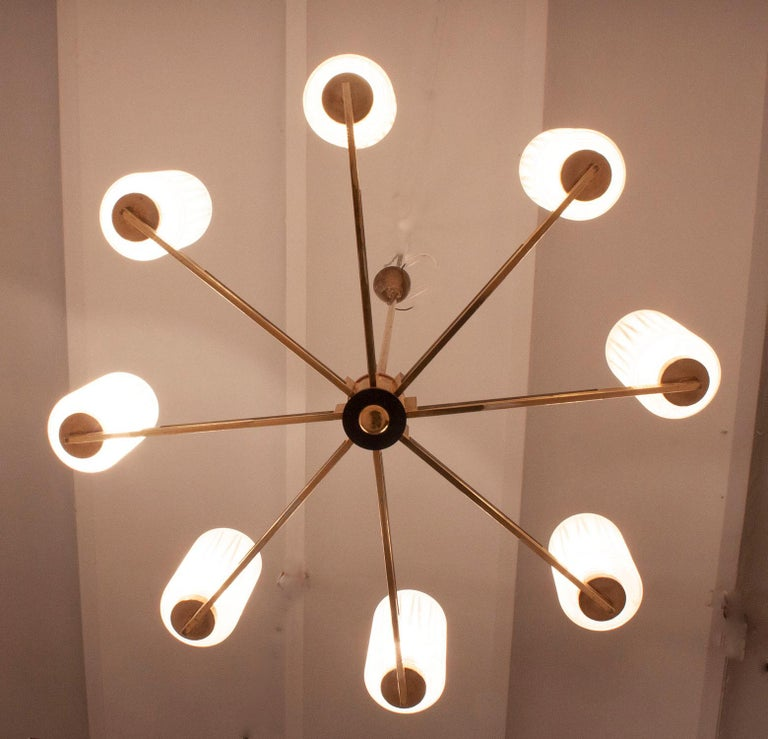 Chandelier with 8 Lights, Polished Brass, Glass Lampshades, Germany, 1950s For Sale 1