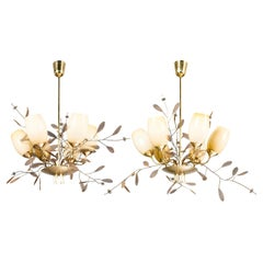 Chandeliers by Paavo Tynell