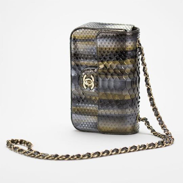 Women's or Men's Chanel Ombré Python Exotic Snakeskin Rare Classic Flap For Sale